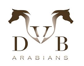 VDB Arabians